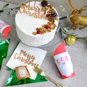 *2018 Little Lemonade クリスマスコーディネート ~Walnut Fairy~ *